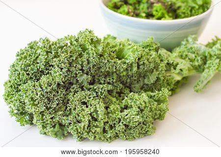 Fresh kale leaves on white background. Kale cabbage. Salad ingredient. Healthy food