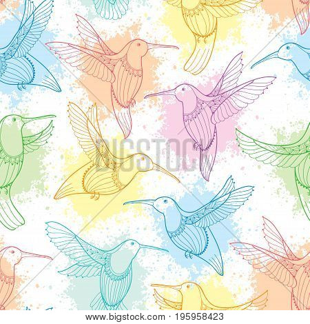 Vector seamless pattern with flying Hummingbird or Colibri in contour style and blots in pastel color on the white background. Elegance background with exotic tropical bird for summer design.