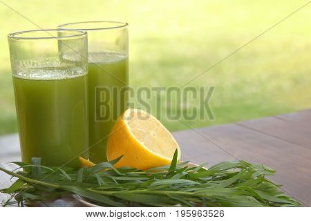Two glass glasses with a drink from the leaves of the tarragon and lemon