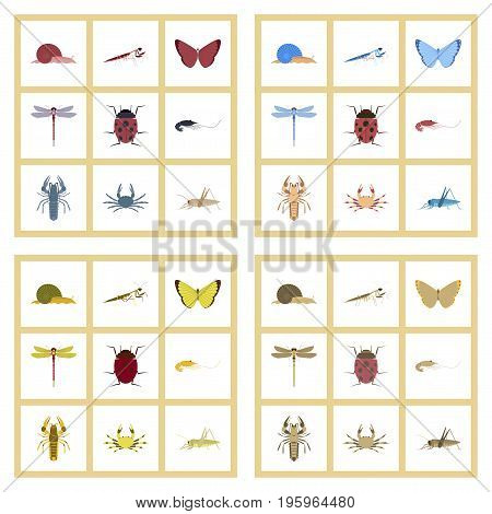 assembly of flat Illustrations natural bug snail butterfly dragonfly ladybug