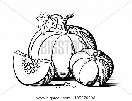 Stylized image of pumpkins. Big pumpkin small pumpkin and pumkin slice with seeds. Outline