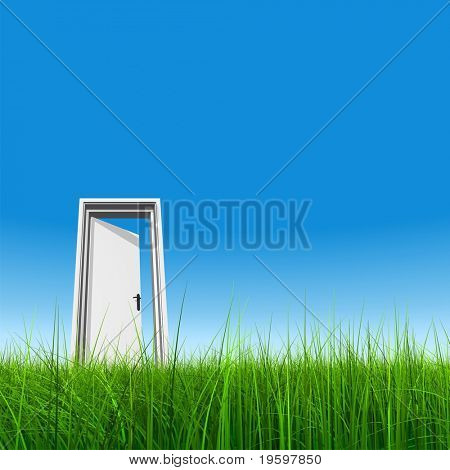 High resolution 3D white door opened in grass to a nice clear sky background