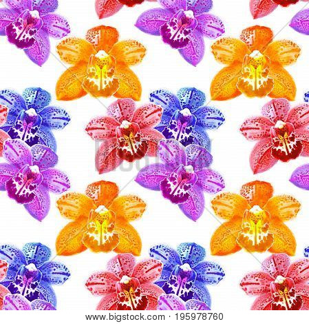 Orchid Phalaenopsis. Texture of flowers. Seamless pattern for continuous replicate.