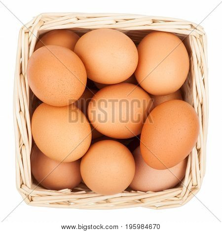 Chicken eggs in a basket isolated on white background top view