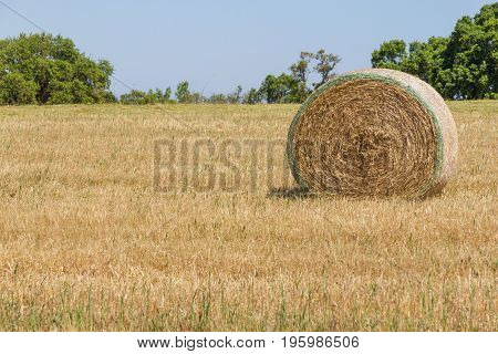 Hay Pile In A Farm Field In Porto Covo