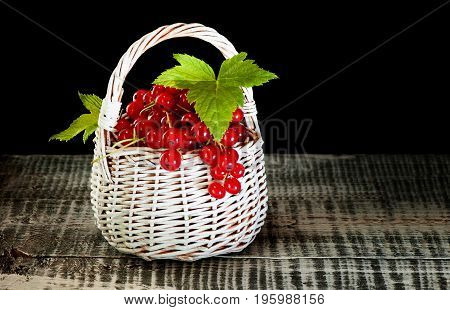 White wicker basket with ripe red currant berries with green leaves on a dark background. A horizontal frame.