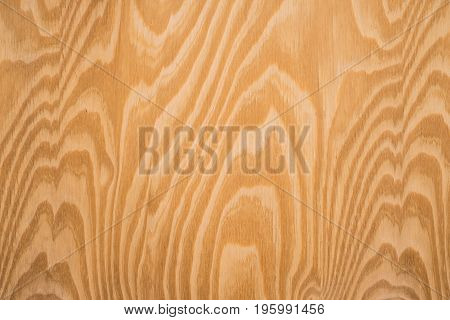 wooden texture closup wood background - wood