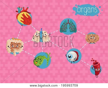 Healthcare poster with human organs. Kidney, lung, eye, heart, stomach, intestine cartoon characters, anatomy vector illustration. Clinic treatment, emergency medical service infographics.