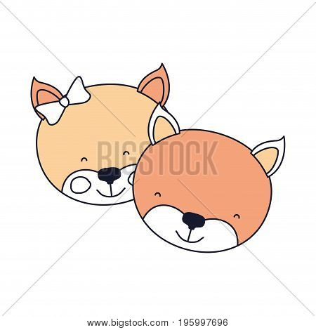 color sections faces of kitten couple animal happiness expression vector illustration