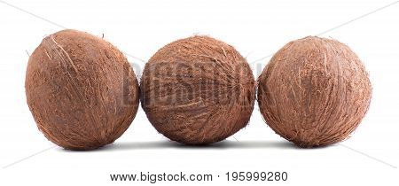 Three whole, fresh, organic brown fruits of coconuts, isolated on a white background. Tropical and exotic coconuts. Fresh and organic nutrients. Vegan diet.