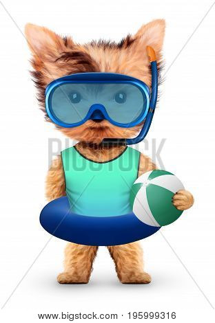 Funny animal in diving mask and swimming ring holding beach ball. Concept summer holidays, travel vacation concept. Realistic 3D illustration.