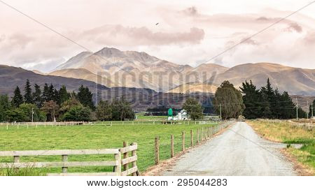 An image of agriculture in New Zealand south island
