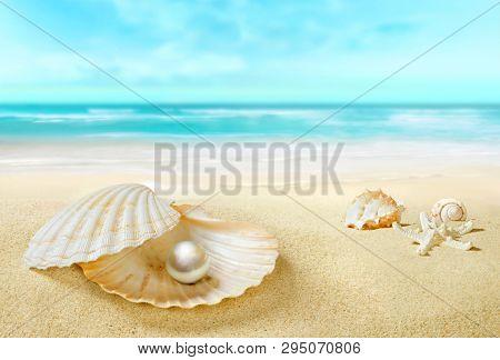 Pearl in an open shell. Sandy tropical beach.