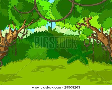 A Green Tropical Forest Landscape with Trees and Leaves