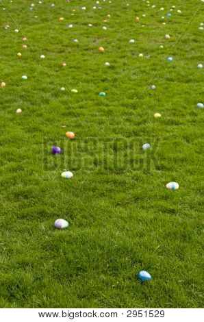 Easter Eggs On Lawn