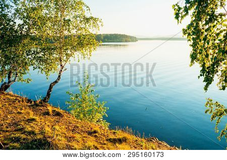Summer sunset landscape - summer trees at the edge of the cliff and lake lit by sunset light. Colorful summer landscape scene