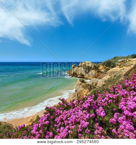 Summer Blossoming Atlantic Rocky Coast View With Purple Flowers And Narrow Sandy Beach (albufeira Ou