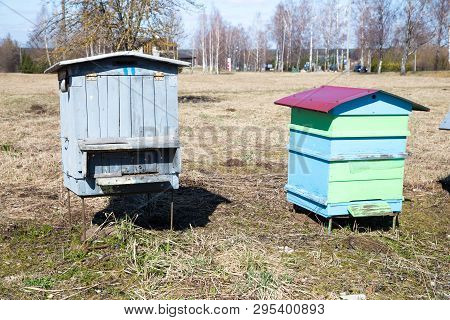 Bees House In The Meadow. Spring And Sunny Day. Travel Photo 2019.