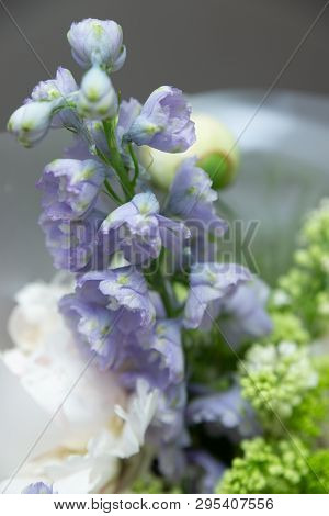 Close Up Of Purple Flower. Bouquet Gathered From Different Flowers.