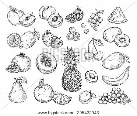 Sketch Fruits. Strawberry Melon, Peach Mango. Banana Pineapple, Raspberry Grapes Hand Drawn Fruit Be