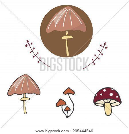 Mushrooms Figure Clip Art Vector Color Texture Element Funny Forest Oak Similar Family Logo Fantasy