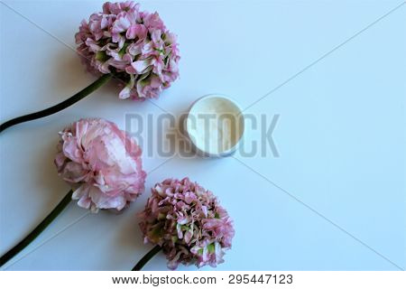 Light Pink Flowers (ranunculus) Isolated On White Background And Jar With White Face Cream