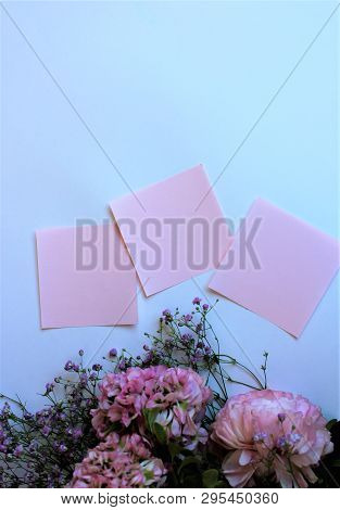 Bouquet Of Light Pink Flowers (ranunculus) And Pink Sheets Of Writing Paper Isolated On White Backgr