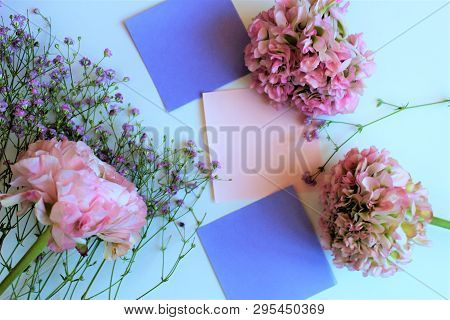 Light Pink Flowers (ranunculus), Lilac Flowers Of Gypsophila And Sheets Of Lilac Paper On A White Ba