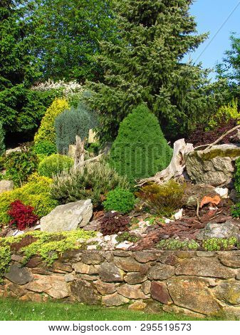 Beautiful Garden, Garden Still Life On A Slope With Stones Planted With Various Colorful Trees And P