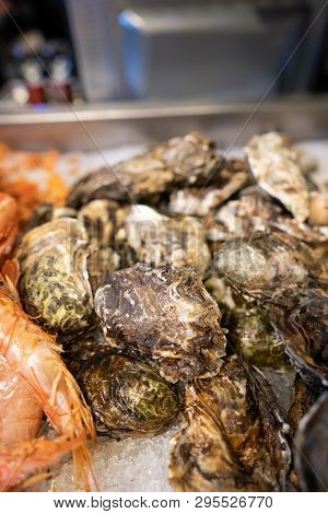 Fresh Closed Oysters On Counter With Ice
