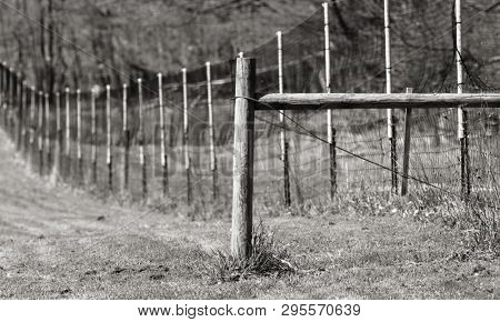 Monochrome image of Long fence in the farm