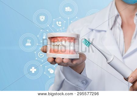 A Closeup Of A Dentist Holding A Denture Model On Her Palm And A Toothbrush In Her Hand At The Medic