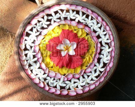 A Colourful Flower Arrangement