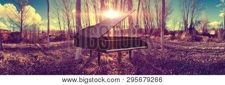 Surreal Dreamscape Forest And Sunset And Black Grand Piano.music Piano Concept And Nature