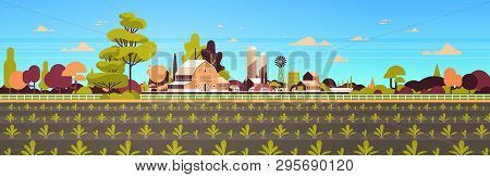 Rows Young Freshly Germinated Plants Vegetable Plantation Agriculture And Farming Concept Farmland F