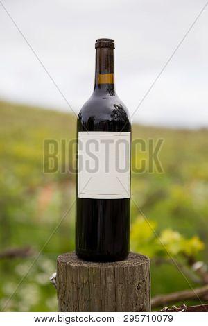 Blank Wine Bottle In Vineyard Sonoma Valley