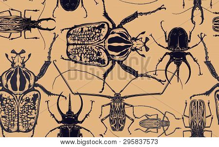 Black Beetles Isolated On Gold Background. Seamless Pattern With Insect. Sketch Of Bug. Realistic Dr