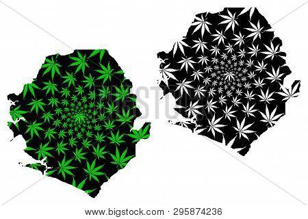 Sierra Leone - Map Is Designed Cannabis Leaf Green And Black, Republic Of Sierra Leone (salone) Map