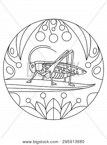 Grasshopper Pattern. Illustration With A Insect. Mandala With An Animal.  Grasshopper In A Circular