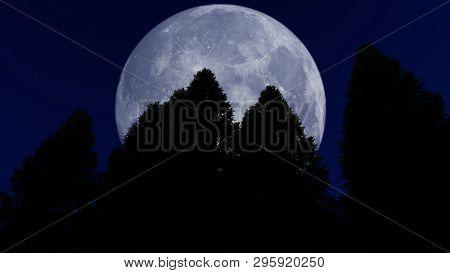 Full Moon Over The Forest, 3d Illustration