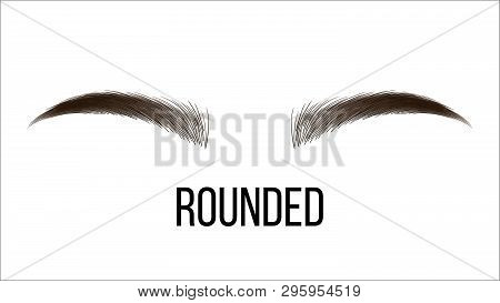 Medium Rounded Vector Hand Drawn Brows Shape. Female Brown Brows Style With Name Isolated Clipart. M