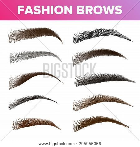 Fashion Brows Various Shapes And Types Vector Set. Brown And Black Brows Pack. Beautician Parlor, Sa