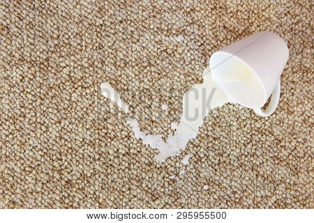 Cup Of Milk Fell On Carpet. Stain Is On Floor.