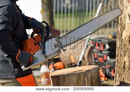 Professional Chainsaw Blade Cutting Log Of Wood. Chainsaw Bar And Cutting Chain. Blade Of A Chainsaw