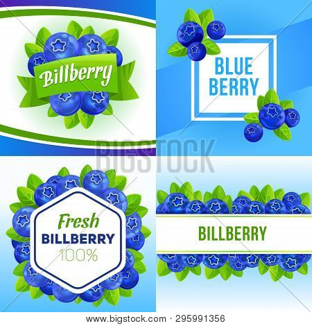 Bilberry Banner Set. Cartoon Illustration Of Bilberry Vector Banner Set For Web Design