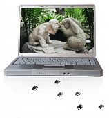 laptop with american cocker spaniel and pawprints poster