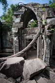 Ruins of Beng Mealea temple Angkor Cambodia poster