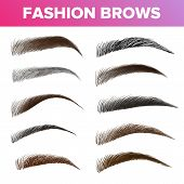 Fashion Brows Various Shapes And Types Vector Set. Brown And Black Brows Pack. Beautician Parlor, Salon Sign Isolated Design Element. Beauty Industry. Trendy Eyebrows Realistic Illustration poster