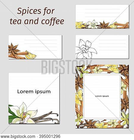 Card Templates Set With Spices: Cinnamon, Anise, Vanilla. Vector Illustration Of The Design Of The C