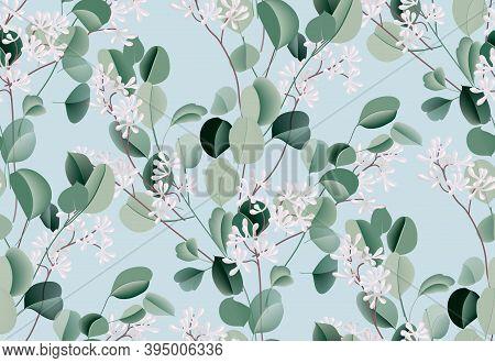 Eucalyptus Watercolor Leaf Seamless Pattern, Evergreen Plant, Botanical Illustration, Dollar Silver